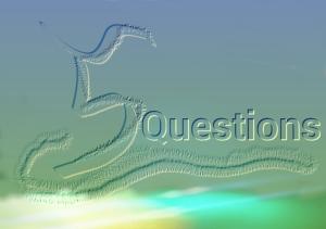 wpid-5-questions.jpg.jpeg